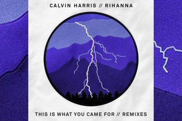 """This Is What You Came For"" Remix"