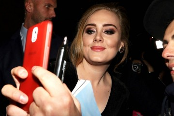 Adele says 'Hello' to doppelgänger with epic selfie
